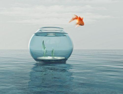 Mut zur Entscheidung. Entschlossen zum Erfolg.