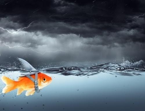 Mutig Angst & Panik in die Schranken weisen