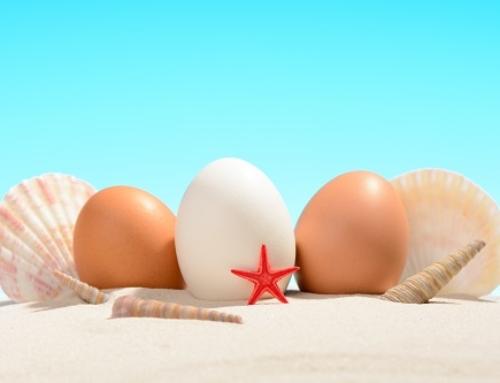 Unser Ostergeschenk: Die Geschichte vom Seestern